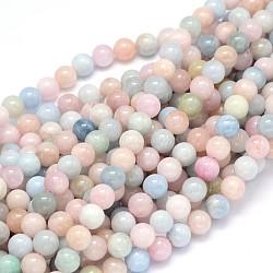 """Rondes grade naturelle perles AA morganite brins, 8mm, Trou: 1mm, Environ 49 pcs/chapelet, 15.3""""(G-F222-35-8mm)"""