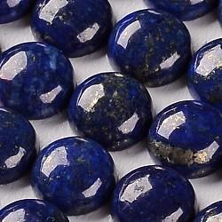 Lapis lazuli pierres précieuses naturelles teints dôme / demi rondes cabochons, 6x4mm(X-G-J330-06-6mm)