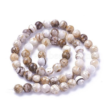 Natural America Petrified Wood Beads Strands, Round, 6mm, Hole: 1mm, about 60~68pcs/strand, 15  inches~15.27 inches(38.2~38.8cm)(G-P430-08-B)