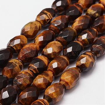 15mm Drum Tiger Eye Beads