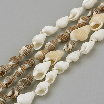 Natural Sea Shell Beads Strands, for DIY Craft Jewelry Making, Mixed Color, 8~18x5~10x5~10mm; about 109pcs/strand, 48 inches (X-SSHEL-R043-05)