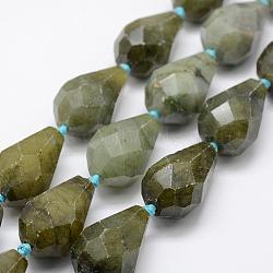 Natural Labradorite Beads Strands, Faceted, Teardrop, 28x18mm, Hole: 2mm; about 13pcs/strand, 15.9''(40.5cm)