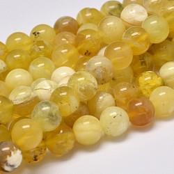 """Opale jaune naturel brins de perles rondes, 8mm, trou: 1mm; environ 48 pcs/chapelet, 15.5""""(G-M296-02-8mm)"""