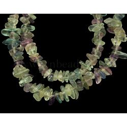 """Perles de pierres gemmes, fleur fluorite, naturel, 5.5~8x3~5mm, trou: 1 mm; environ 34""""(G-P406-01)"""