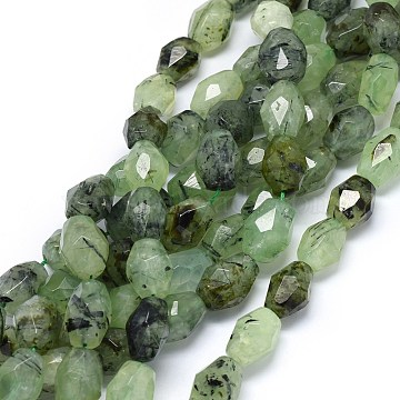 Natural Prehnite Beads Strands, Faceted, Drum, 16~21x13~15mm, Hole: 1.2mm, about  20~22pcs/strand, 15.3 inches(G-O173-025)