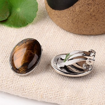 Natural Tiger Eye Oval Clip-on Earrings, with Platinum Plated Brass Findings, 21x15mm(EJEW-J091-04)
