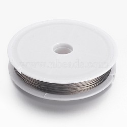 Tiger Tail Craft Wire, Nylon-coated Steel, Stainless Craft Wire, for Beading Jewelry Craft Making, LightGrey, 0.45mm; 50m/roll(L0.45mm01)
