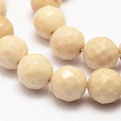 """Fossiles naturelle rondes brins de perles, facette, 10mm, trou: 1mm; environ 37 pcs/chapelet, 15.5""""(G-O151-02-10mm)"""