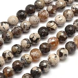 """Chapelets de perles rondes à facettes en agate naturelle teintée, chameau, 10mm, trou: 1mm; environ 38 pcs/chapelet, 15""""(X-G-E268-17)"""