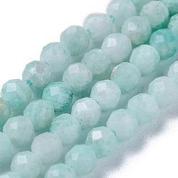 """Chapelets de perles en amazonite naturelle, rond, facette, 3mm, trou: 0.5mm; environ 118 pcs/chapelet, 15.3"""" (39 cm)(G-O166-24-3mm)"""