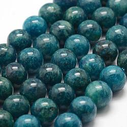 """Chapelets de perles en apatite naturelle, rond, 10mm, trou: 1mm; environ 38 pcs/chapelet, 15.5"""" (39.5 cm)(G-F475-06-10mm)"""