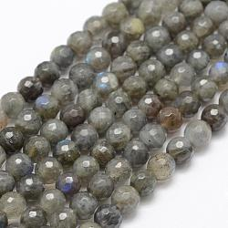 Natural Labradorite Beads Strands, Grade A+, Faceted, Round, 6mm, Hole: 1mm; about 66pcs/strand, 15.1''(38.5cm)