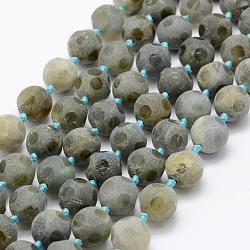 Natural Labradorite Beads Strands, Frosted, Football/Soccer, 12~13mm, Hole: 1mm; about 27pcs/strand, 15.9''(40.5cm)