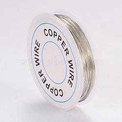 Copper Jewelry Wire, Silver, 24 Gauge, 0.5mm; 9m/roll(X-CWIR-CW0.5mm-06)