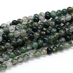 """Chapelets de perle ronde en pierre précieuse naturelle, agate, 6mm, trou: 1mm; environ 64 pcs/chapelet, 16""""(G-J303-07-6mm)"""