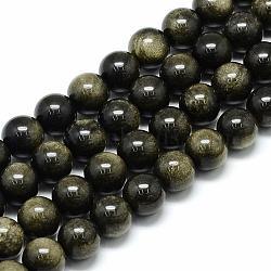 Chapelets de perles en obsidienne dorée naturelle, rond, 8x7.5mm, trou: 1mm; environ 46~49 pcs/chapelet, 15.5''(G-S150-20-8mm)