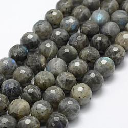 Natural Labradorite Beads Strands, Round, Faceted, 14mm, Hole: 1mm; about 27pcs/strand, 15.1''(38.5cm)