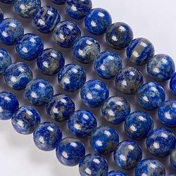 Нитки бусины из натурального ляписа-лазури, круглые, 10 мм, Отверстие : 1 мм; около 39 шт / нитка, 15.5