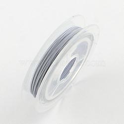 Fil de queue de tigre, acier revêtu de nylon, fumée blanche, 0.38 mm; environ 10 m/rouleau(X-TWIR-S001-0.38mm-05)