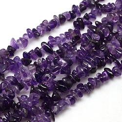 """Puces naturelles améthyste perles brins, 8~14x4~8x3~6mm, trou: 1 mm; environ 15~16""""(X-G-P030-02)"""