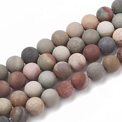 amérique naturelle image perles de jaspe, givré, arrondir, 8~8.5 mm, trou: 1 mm; environ 47 perle / brin, 15.5(X-G-T106-166)