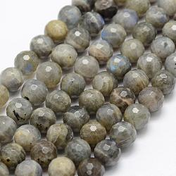Natural Labradorite Beads Strands, Grade A-, Faceted, Round, 4mm, Hole: 1mm; about 107pcs/strand, 15.1''(38.5cm)