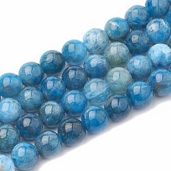 """Chapelets de perles en apatite naturelle, rond, 8~9mm, trou: 1mm; environ 45~48 pcs/chapelet, 15.7""""(G-S333-8mm-012)"""