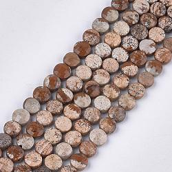 Chapelets de perles en jaspe avec images naturelles, facette, plat rond, 6~6.5x3.5mm, trou: 0.8mm; environ 59~60 pcs/chapelet, 14.9''~15.1''(G-S354-20)