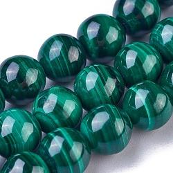 Chapelets de perles en malachite naturelle, rond, 8mm, trou: 0.7mm; environ 52~53 pcs/chapelet, 15.5'' (39.5 cm)(G-G779-04A)