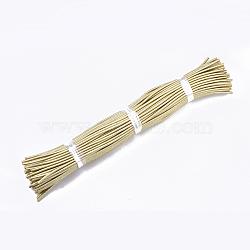 Round Purl Nylon Thread Cord, with PVC Tube inside, Metallic Cord, Gold, 455~465x5mm(RCOR-R002-140)