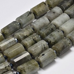 Faceted Column Natural Labradorite Bead Strands, 14x10mm, Hole: 1mm; about 22pcs/strand, 15.5inches