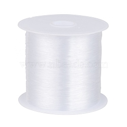 1 Roll Transparent Fishing Thread Nylon Wire, Clear, 0.25mm, about 109.36 yards(100m)/roll(X-NWIR-R0.25MM)
