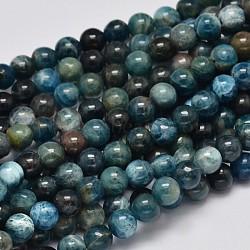 """Rondes apatite naturelle perles brins, grade AB, 6mm, trou: 1mm; environ 64 pcs/chapelet, 15.7""""(G-K068-02-6mm)"""