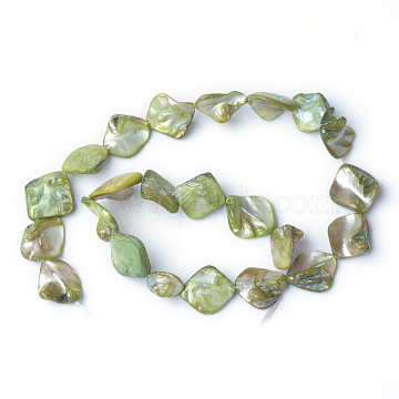 Natural Sea Shell Beads, Irregular, Green, 20x21mm, Hole: 1mmabout 22pcs/strand, 16 inches/strand(X-S00EA041)