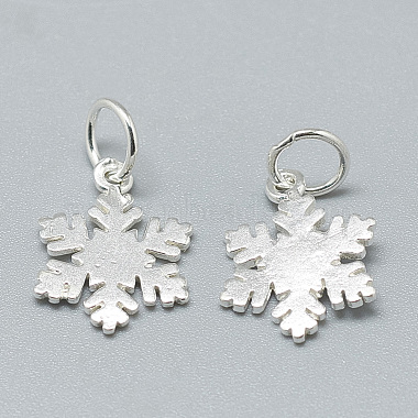 925 Sterling Silver Charms(STER-T002-290S)-2