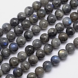 Natural Labradorite Round Bead Strands, 10mm, Hole: 1mm; about 40pcs/strand, 15.5inches