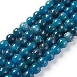 """Chapelets de perles en apatite naturelle, rond, 4mm, trou: 0.8mm; environ 95 pcs/chapelet, 15.5"""" (39.5 cm)(G-F617-01-4mm)"""