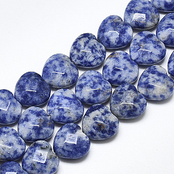Perles de jaspe tache bleue naturelle, facette, cœur, 14.5~15x15~15.5x7~8mm, trou: 1.2mm; environ 14 pcs/chapelet, 7.6''(G-S357-E02-06)