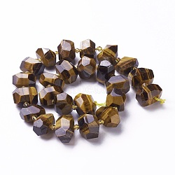 naturelles oeil de tigre brins de perles, facettes, nuggets, 12~20x12~16 mm, trou: 1.8~2 mm; environ 22~23 perle / brin, 15 15.74 cm)(G-P434-15)
