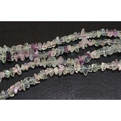 """Perles en pierres gemme, fluorite naturel, puces, colorées, longueur d'environ 5~8 mm , trou: environ 0.3 mm, 32""""(X-F006)"""