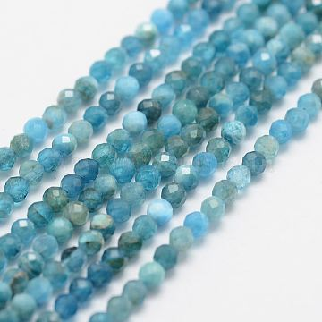 Grade A Natural Apatite Bead Strands, Round, Faceted, 2.7~3mm, Hole: 0.5mm; about 180~189pcs/strand, 15.3inches(39cm)(G-G663-19-2mm)