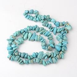 """Vert Turquoise pierre chapelets de perles naturelles colorées, puce, 8~18x6~12x3~7mm, trou: 1 mm; environ 160 pcs / brins, 34.6""""(X-G-R192-B23)"""