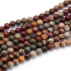 """Brins de perles rondes en pierre naturelle picasso / jaspe picasso, 10mm, trou: 1mm; environ 38 pcs/chapelet, 15""""(G-J303-16-10mm)"""
