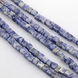 Cube Natural Blue Spot Jasper Beads Strands, 4x4x4mm, Hole: 1mm; about 85~100pcs/strand, 15.3inches~15.8inches(G-P057-05)