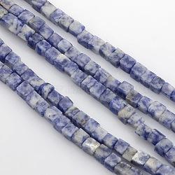 куб натуральное синее пятно нитки из бисера яшмы, 4x4x4 mm, отверстия: 1 mm; о 85~100 шт / прядь, 15.3(G-P057-05)