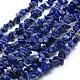 Natural Lapis Lazuli Beads Strands(X-G-P332-50)-1