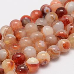 Натуральный сардоникс / полосатый агат / полосатый агат, круглые, класс А, светло-оранжевые, 8 мм, Отверстие : 1 мм; около 47~48 шт / нитка, 14.5