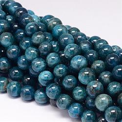 """Chapelets de perles en apatite naturelle, rond, 10mm, trou: 1mm; environ 40 pcs/chapelet, 15.7""""(G-P132-04-10mm)"""