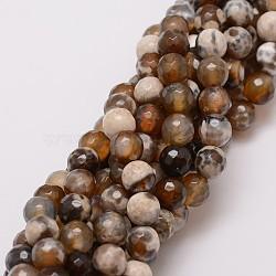 """Chapelets de perle en agate de feu naturel, teint, facette, rond, café, 8mm, trou: 1mm; environ 47 pcs/chapelet, 14""""(X-G-G882-8mm-B06-3)"""