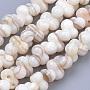 9mm Blanc Antique Autres Coquillage D'eau Douce Perles(X-SHEL-Q015-01)